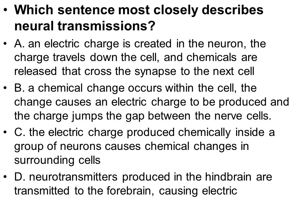 Which sentence most closely describes neural transmissions
