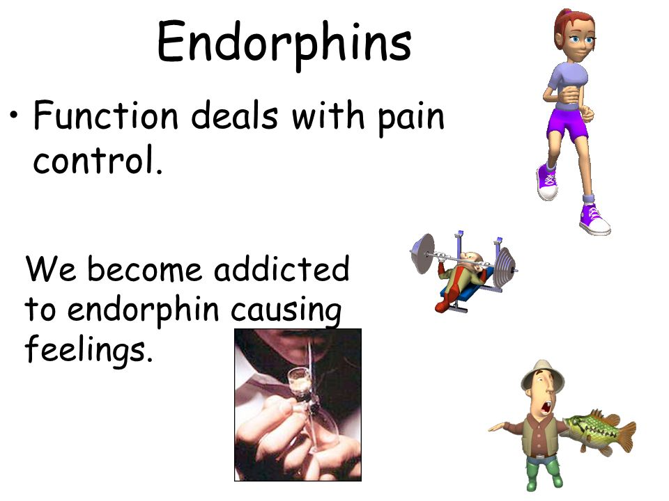 Endorphins Function deals with pain control.