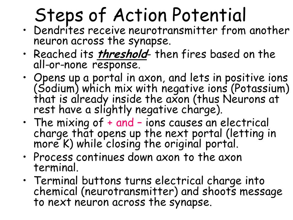 Steps of Action Potential