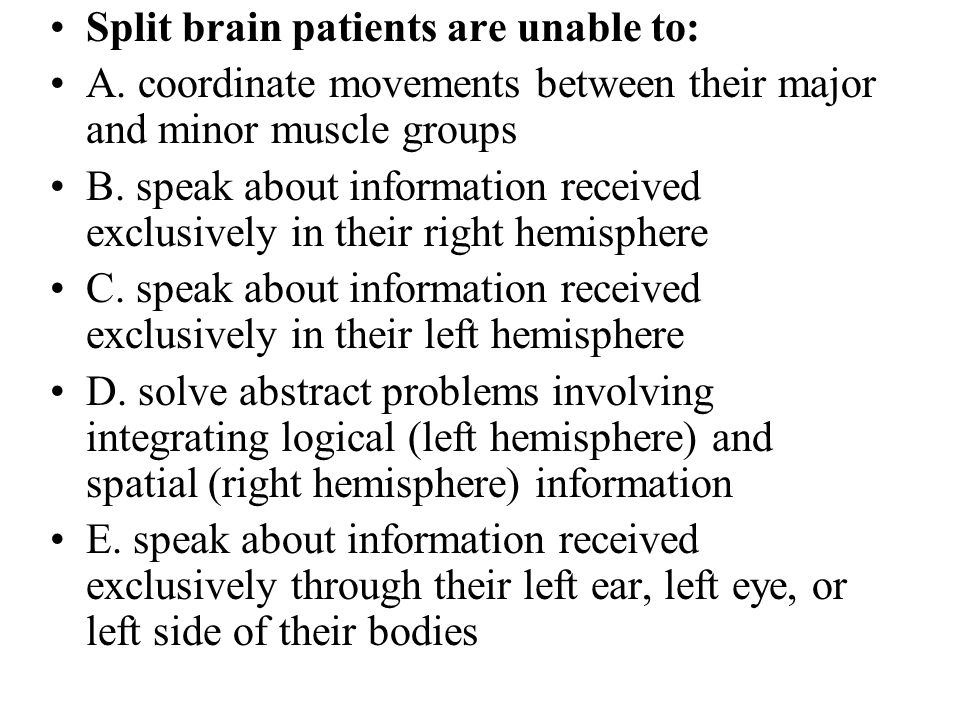 Split brain patients are unable to: