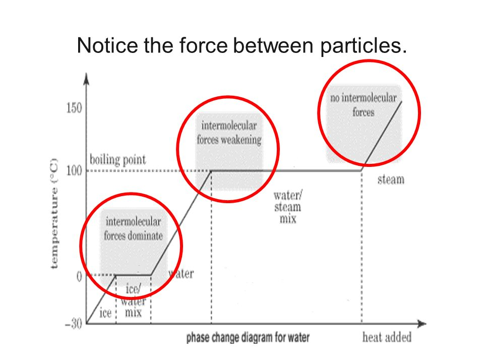 Notice the force between particles.