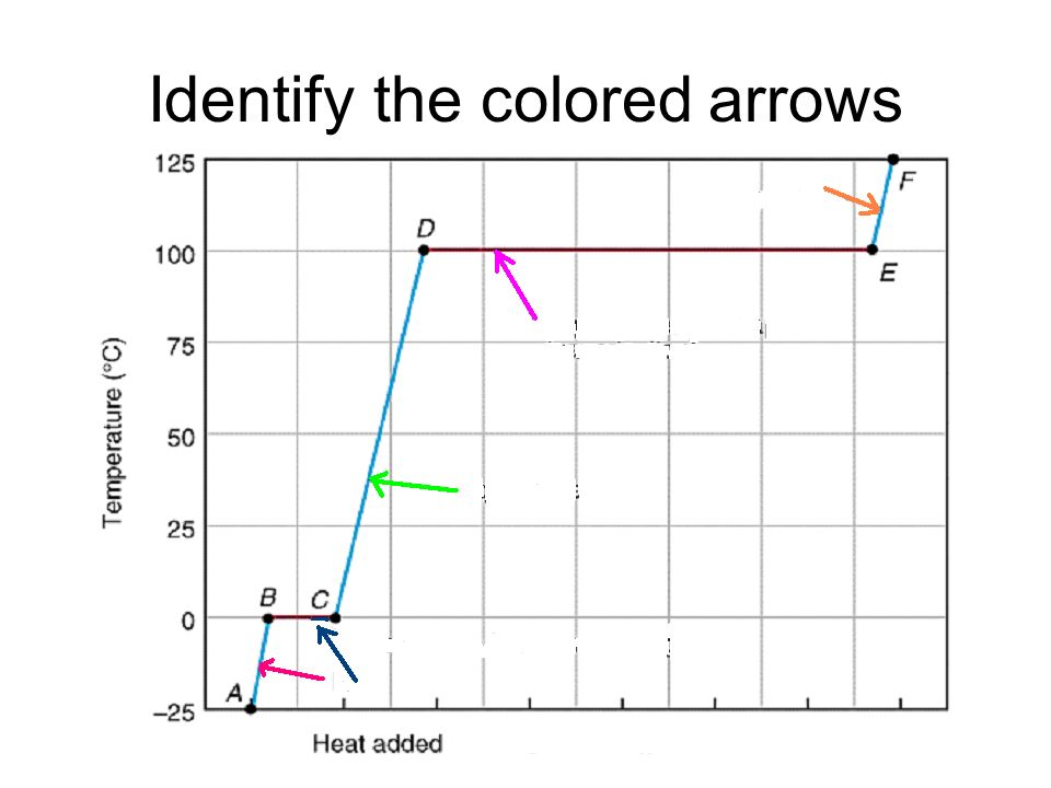 Identify the colored arrows