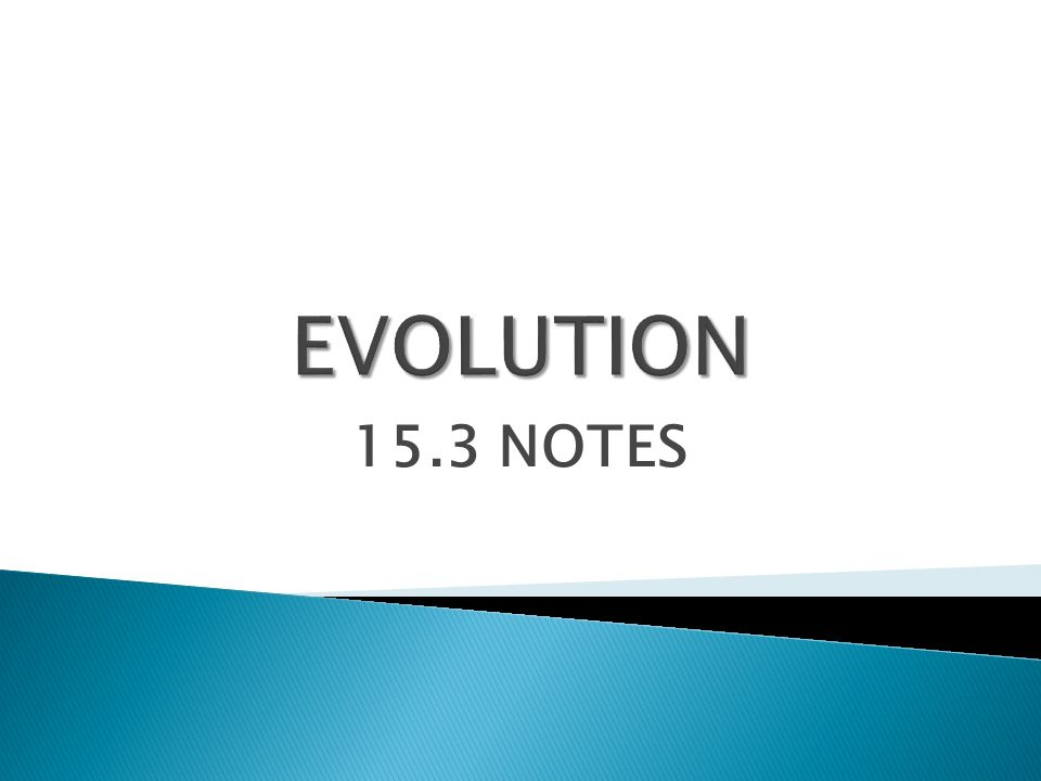 EVOLUTION 15.3 NOTES