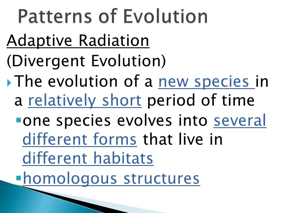 Patterns of Evolution Adaptive Radiation (Divergent Evolution)