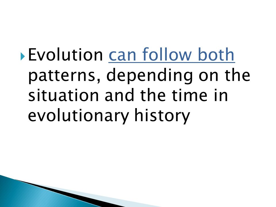 Evolution can follow both patterns, depending on the situation and the time in evolutionary history