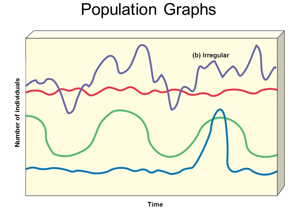 Population Graphs Number of individuals Time (b) Irregular