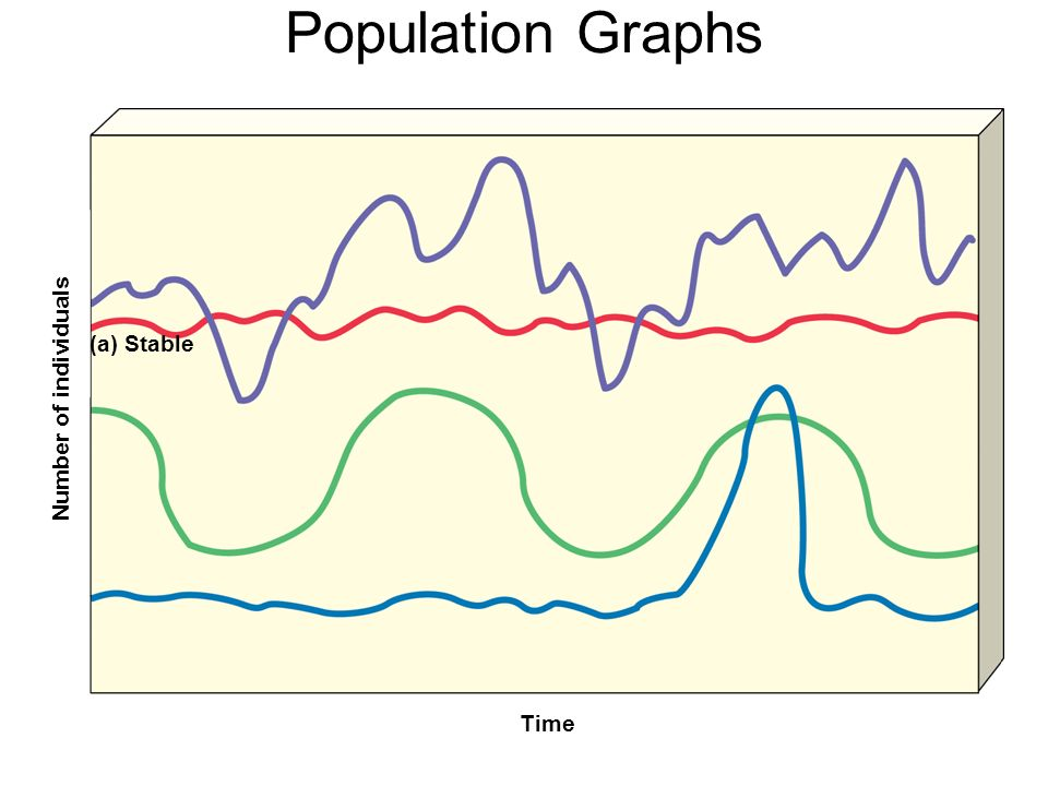Population Graphs Number of individuals Time (a) Stable