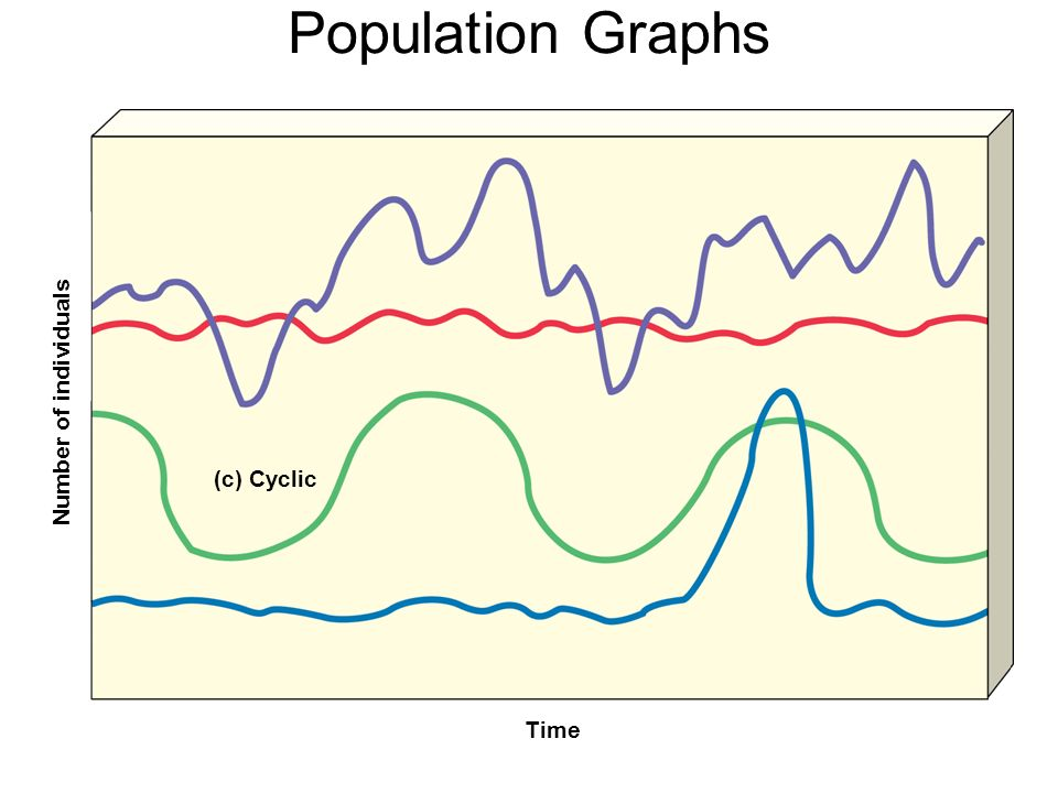 Population Graphs Number of individuals Time (c) Cyclic