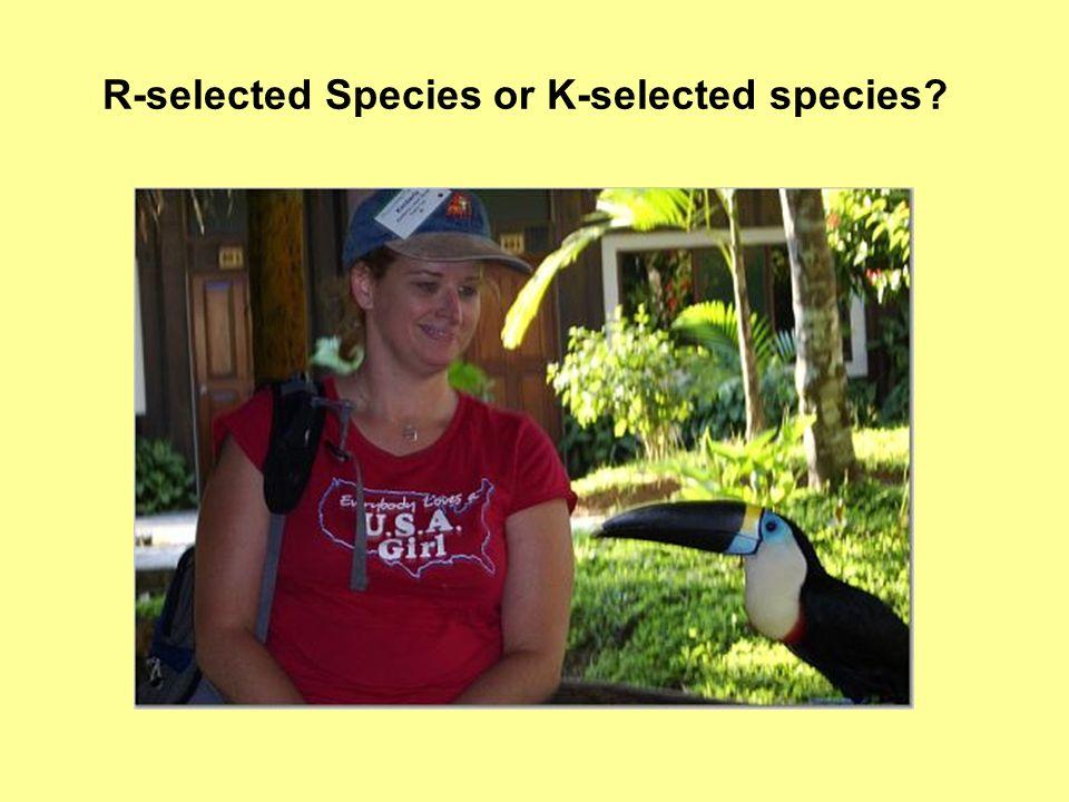 R-selected Species or K-selected species