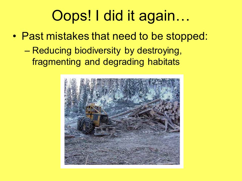 Oops! I did it again… Past mistakes that need to be stopped: