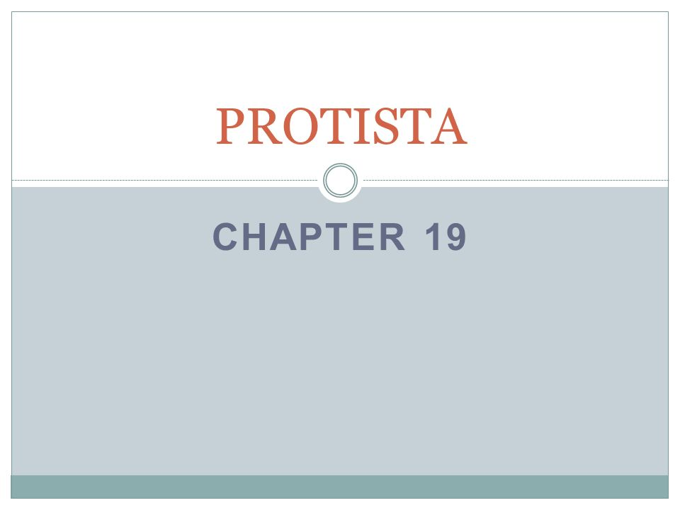 PROTISTA Chapter 19