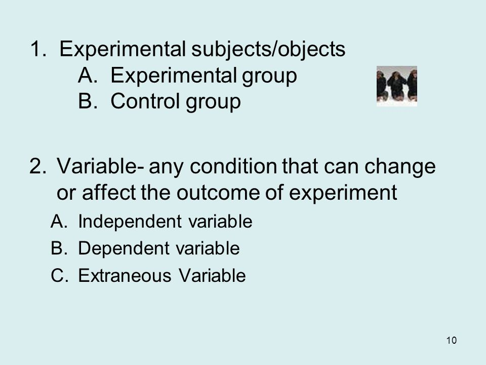 1. Experimental subjects/objects. A. Experimental group. B