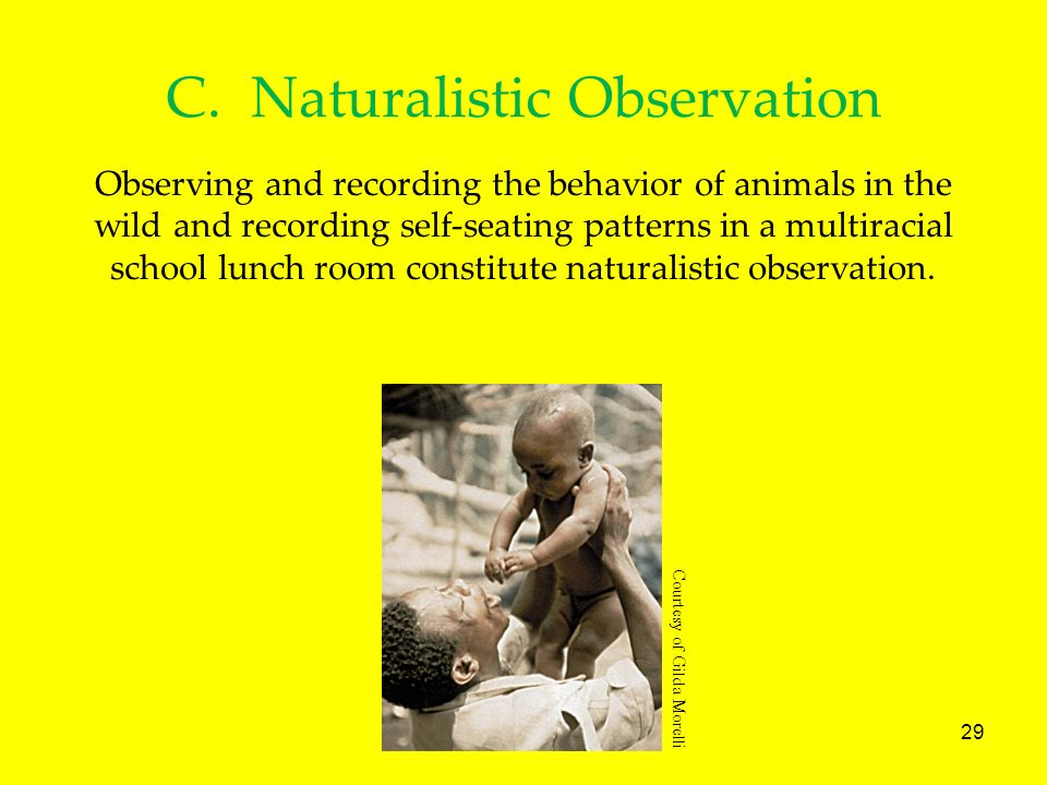 C. Naturalistic Observation