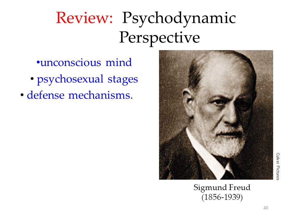 Review: Psychodynamic Perspective