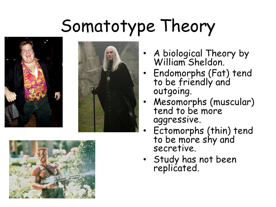 Somatotype Theory A biological Theory by William Sheldon.