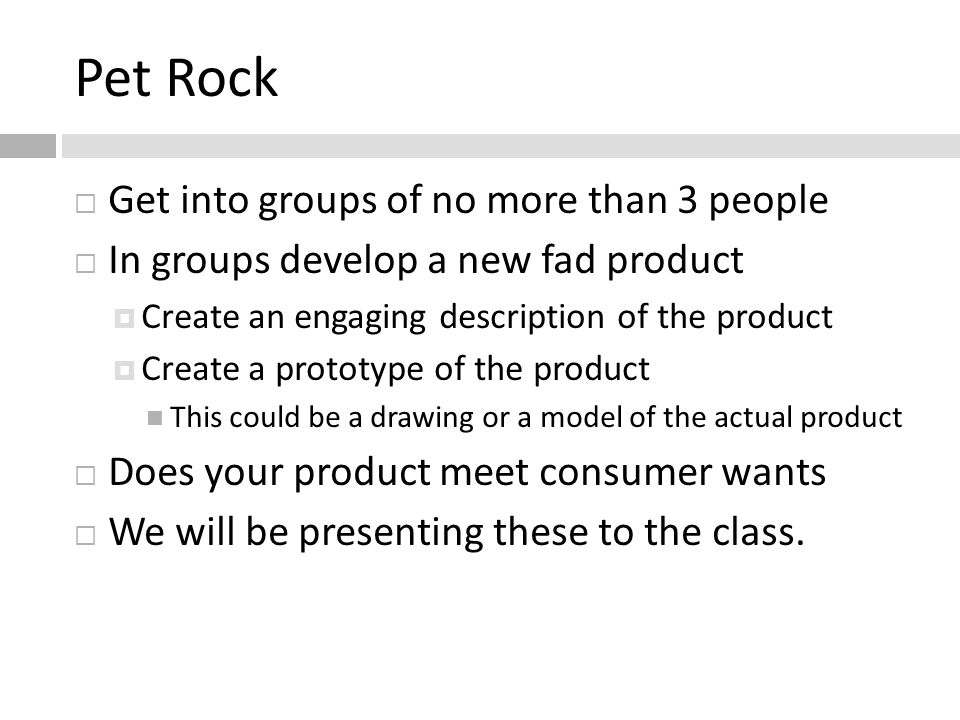 Pet Rock Get into groups of no more than 3 people