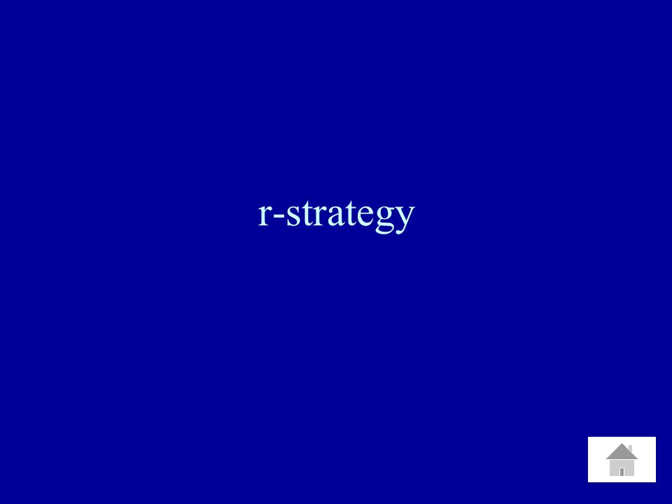 r-strategy