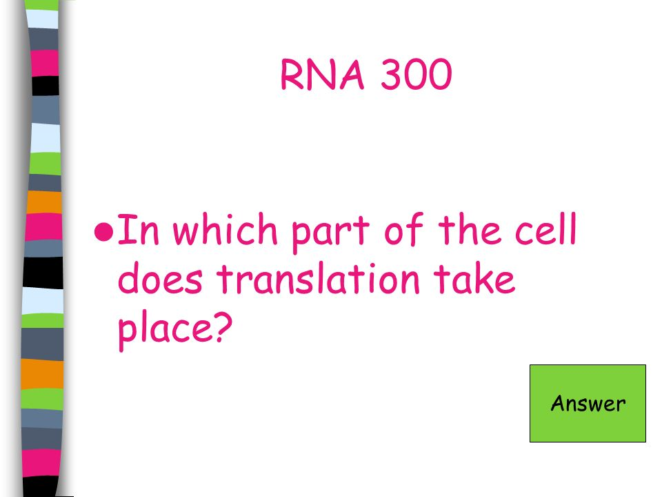 In which part of the cell does translation take place