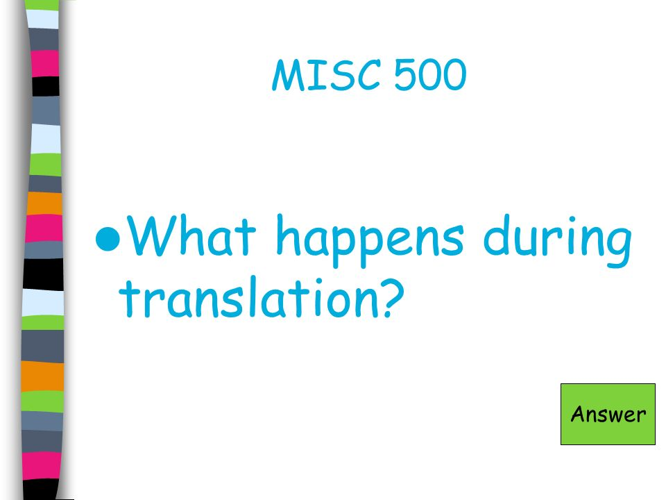 What happens during translation