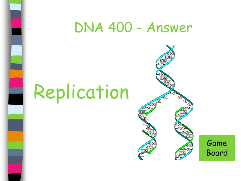 DNA 400 - Answer Replication Game Board