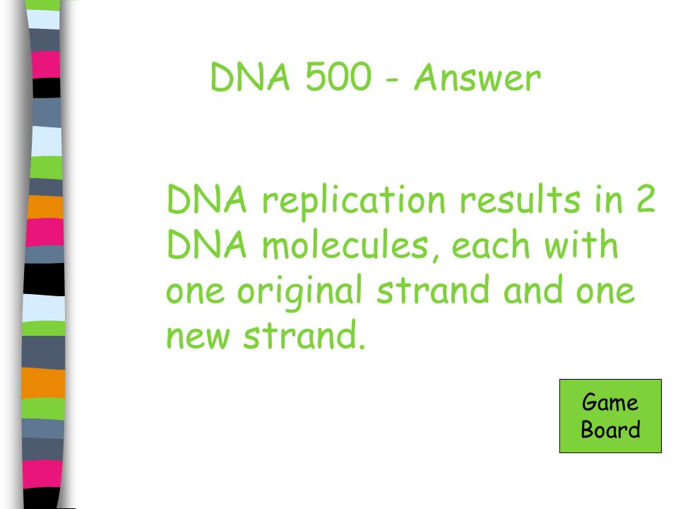 DNA 500 - Answer DNA replication results in 2 DNA molecules, each with one original strand and one new strand.