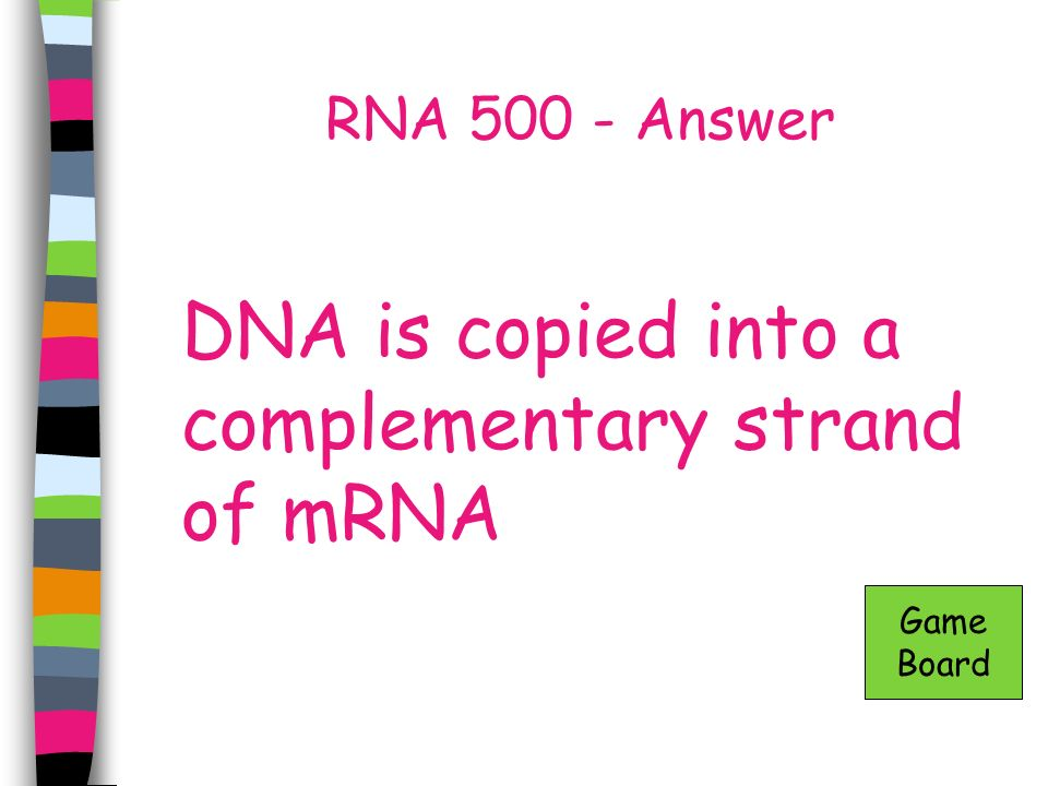 DNA is copied into a complementary strand of mRNA