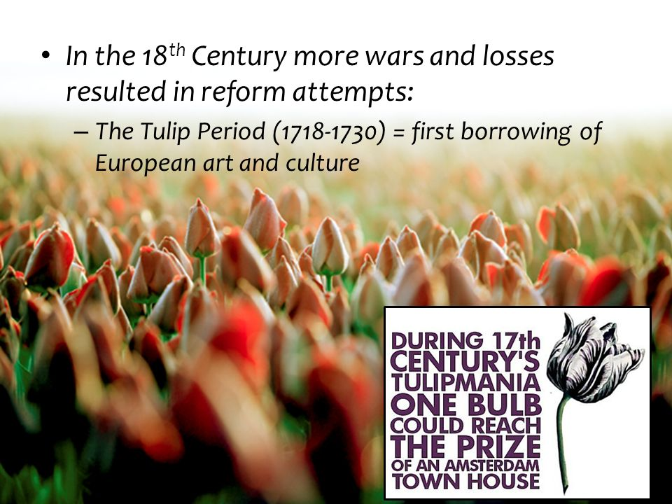 In the 18th Century more wars and losses resulted in reform attempts: