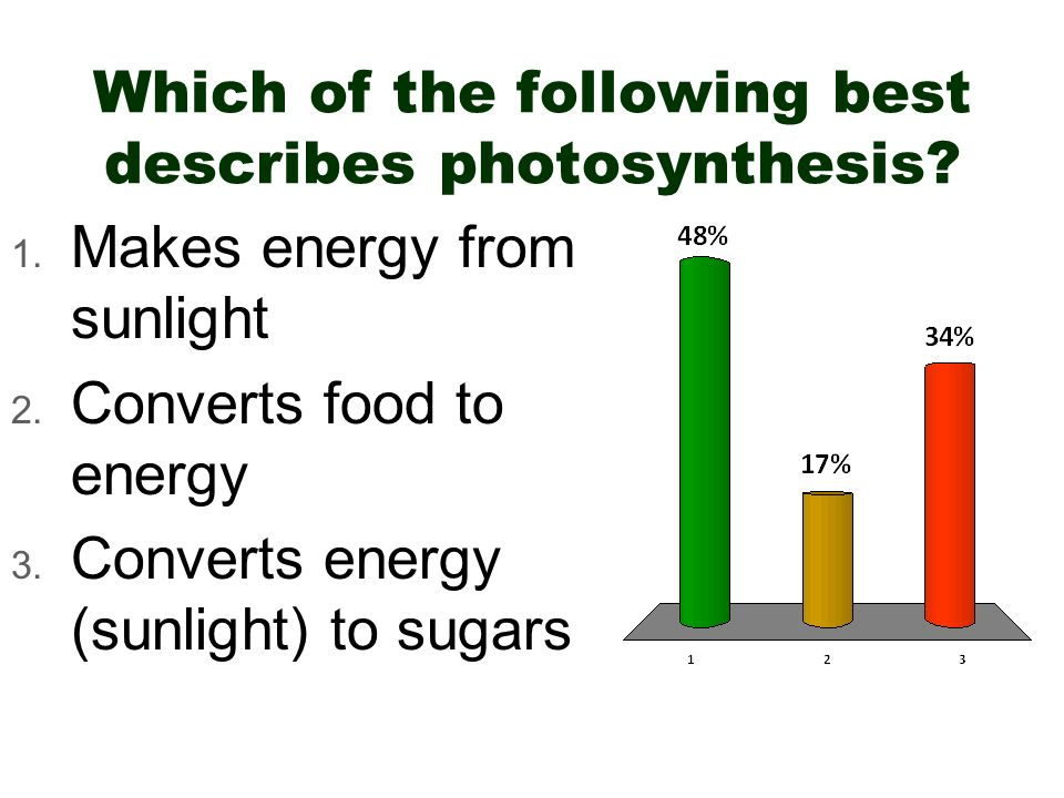 Which of the following best describes photosynthesis