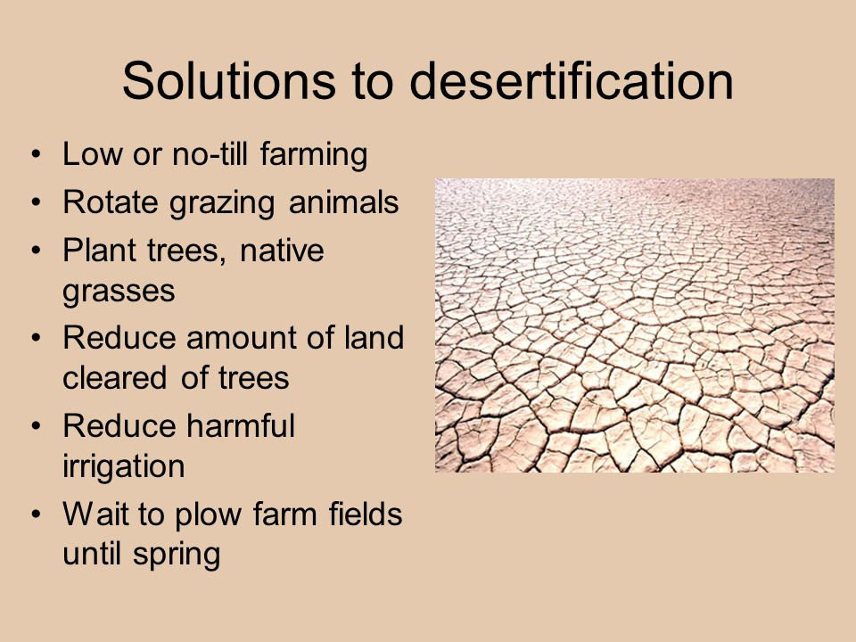Solutions to desertification