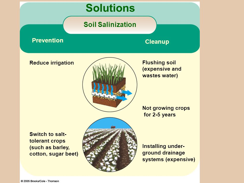 Figure 14-12 Page 283 Solutions Soil Salinization Prevention Cleanup