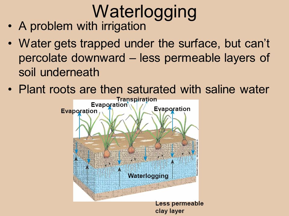 Waterlogging A problem with irrigation