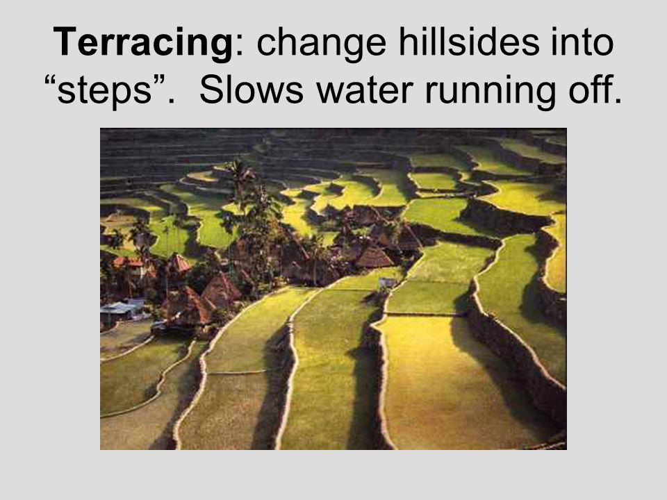Terracing: change hillsides into steps . Slows water running off.