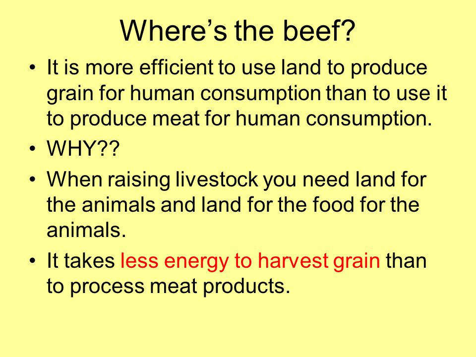 Where's the beef It is more efficient to use land to produce grain for human consumption than to use it to produce meat for human consumption.