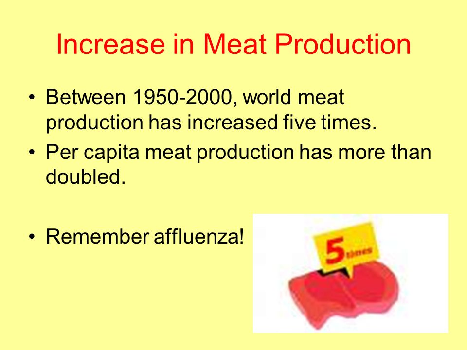 Increase in Meat Production