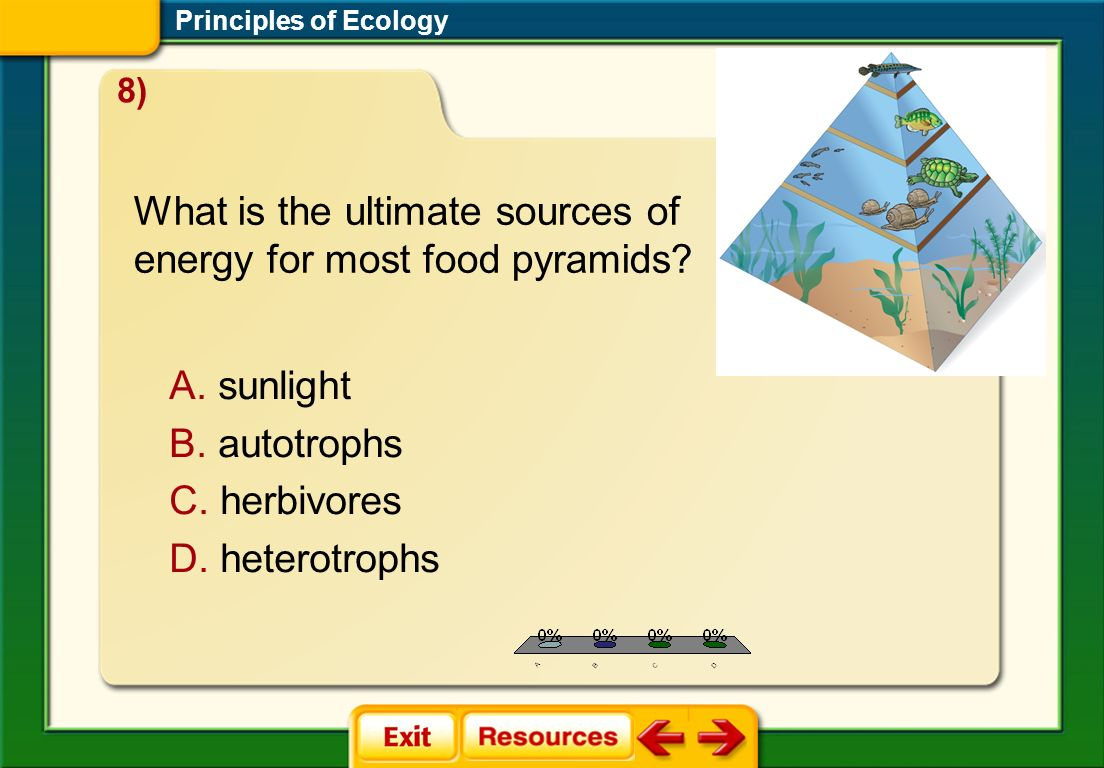 What is the ultimate sources of energy for most food pyramids