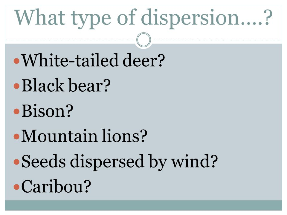 What type of dispersion….