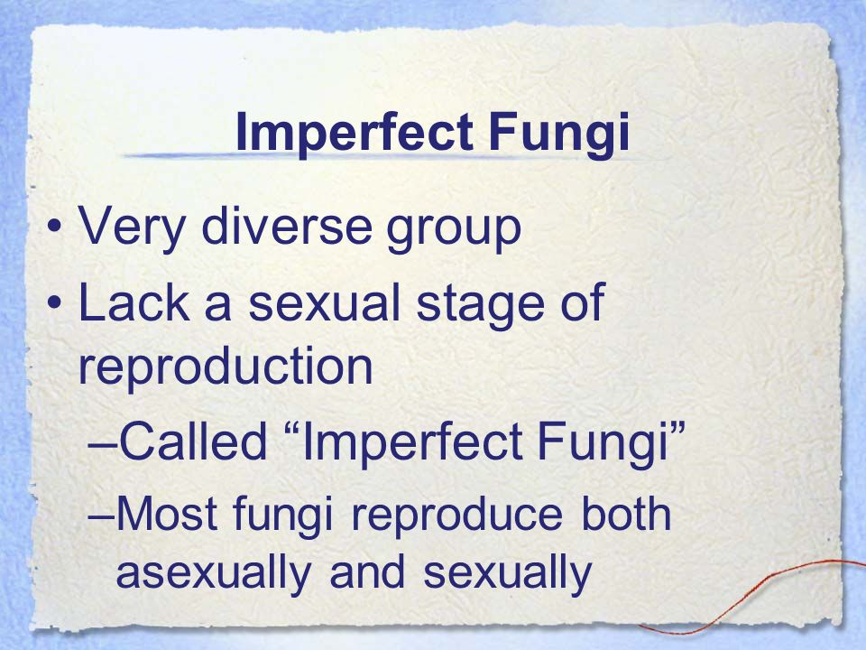 Lack a sexual stage of reproduction Called Imperfect Fungi