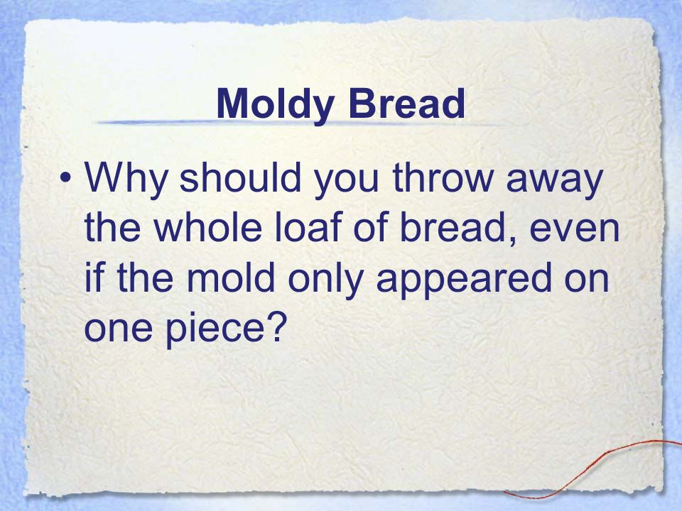 Moldy Bread Why should you throw away the whole loaf of bread, even if the mold only appeared on one piece