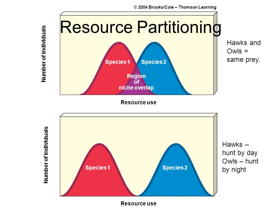 Resource Partitioning