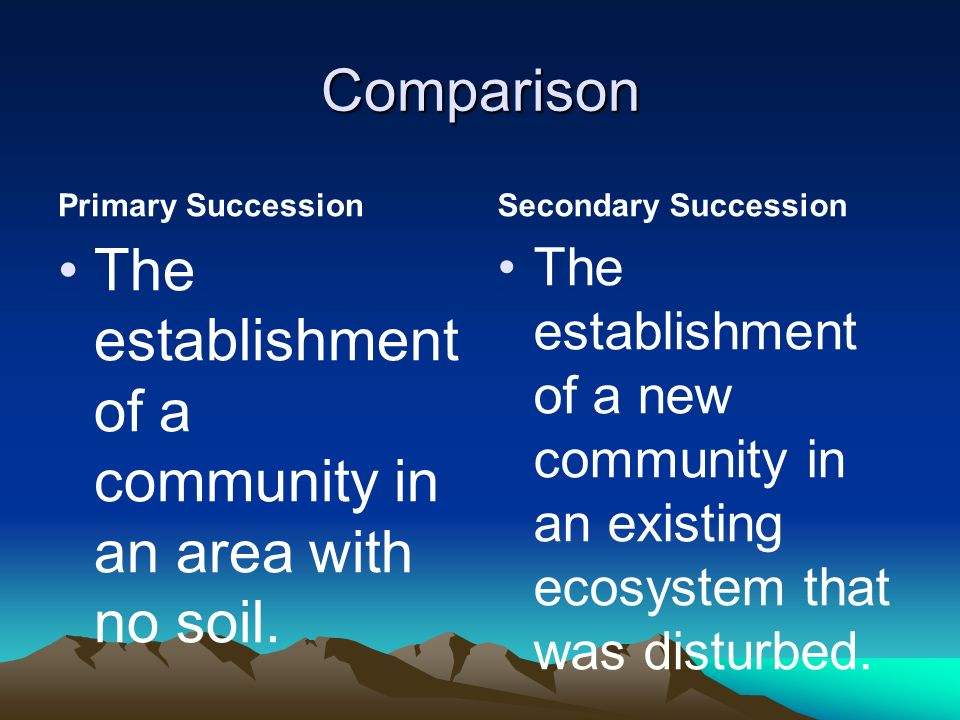 The establishment of a community in an area with no soil.