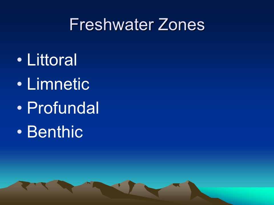 Freshwater Zones Littoral Limnetic Profundal Benthic