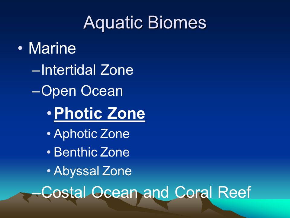 Aquatic Biomes Marine Photic Zone Costal Ocean and Coral Reef