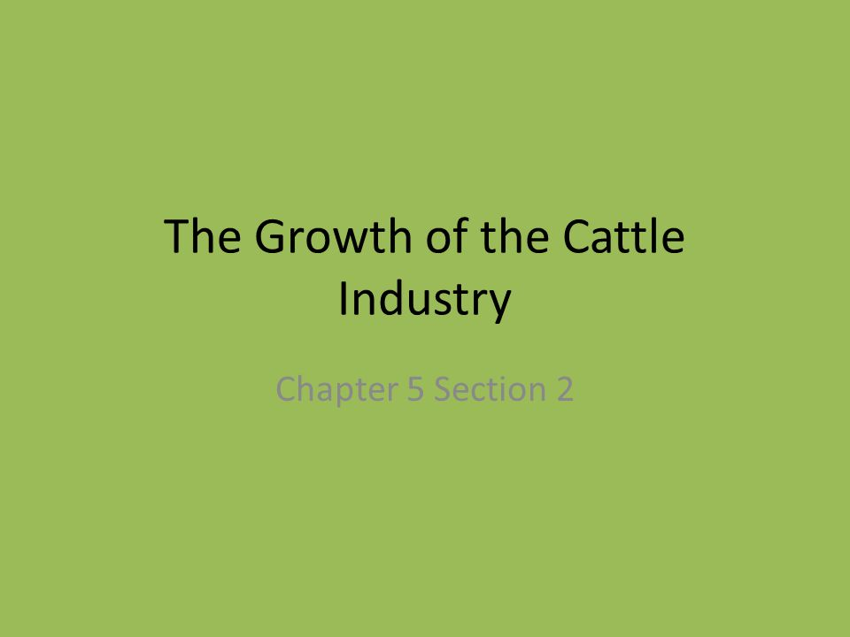The Growth of the Cattle Industry