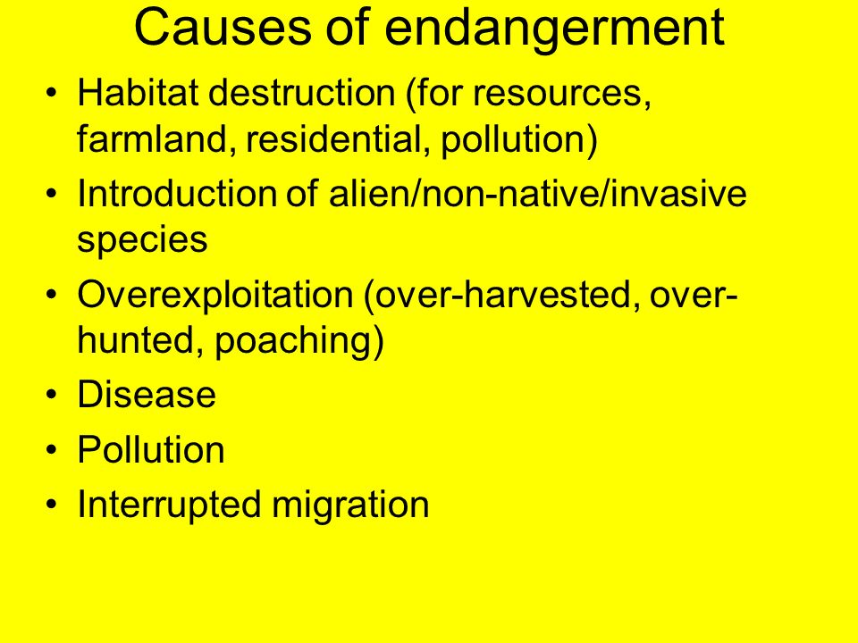 Causes of endangerment