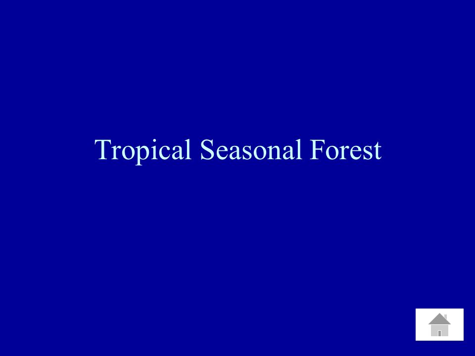 Tropical Seasonal Forest