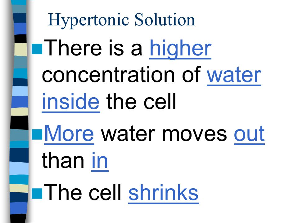 There is a higher concentration of water inside the cell