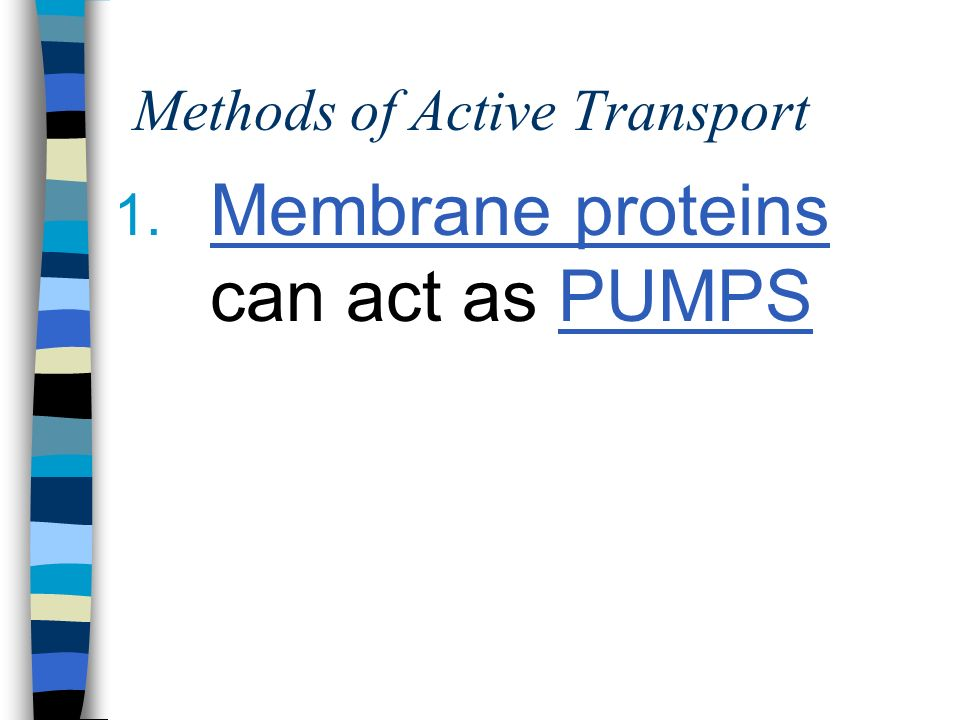 Methods of Active Transport