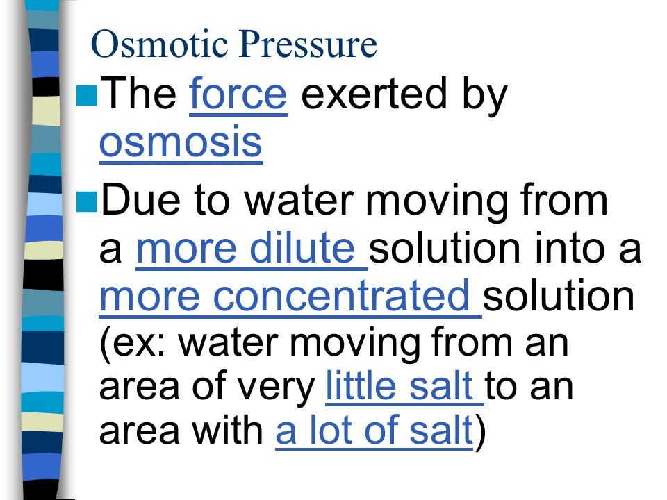 The force exerted by osmosis