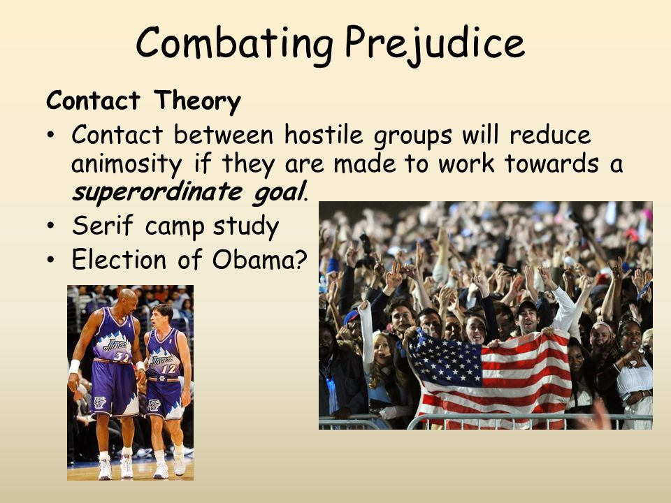 Combating Prejudice Contact Theory