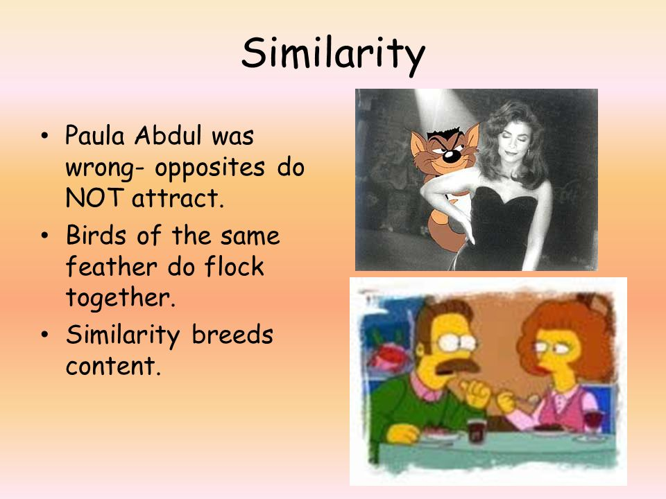 Similarity Paula Abdul was wrong- opposites do NOT attract.